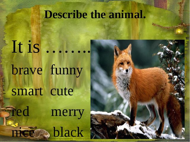 Describe the animal. It is …….. brave funny smart cute red merry nice black s...