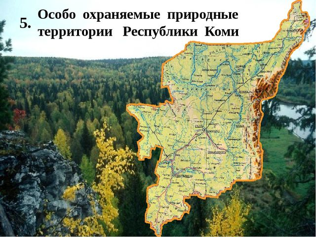 Соедини части пословиц 1) Лес наш-… 2) Мал короед, да… 3) В лесу, в воде… 4)...