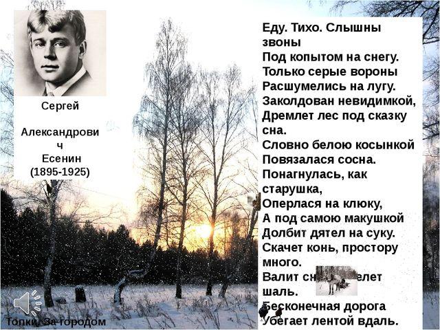 Сергей Александрович Есенин (1895-1925) «Пороша» Еду. Тихо. Слышны звоны Под...