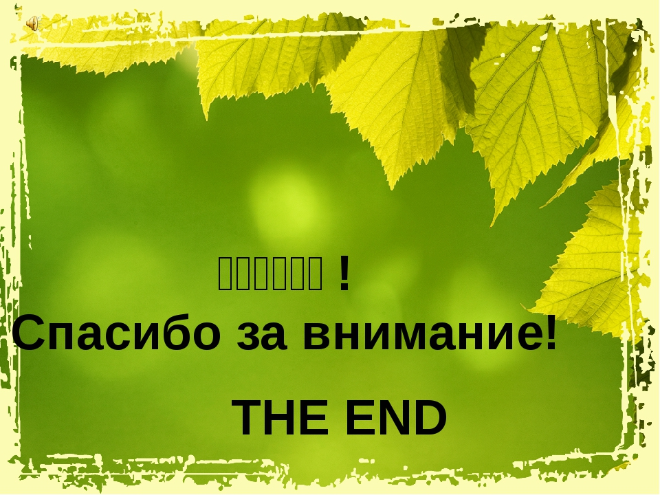 THE END 谢谢您的关注! Спасибо за внимание!