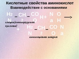 Кислотные свойства аминокислот Взаимодействие с основаниями H2N CH2 COO H + O