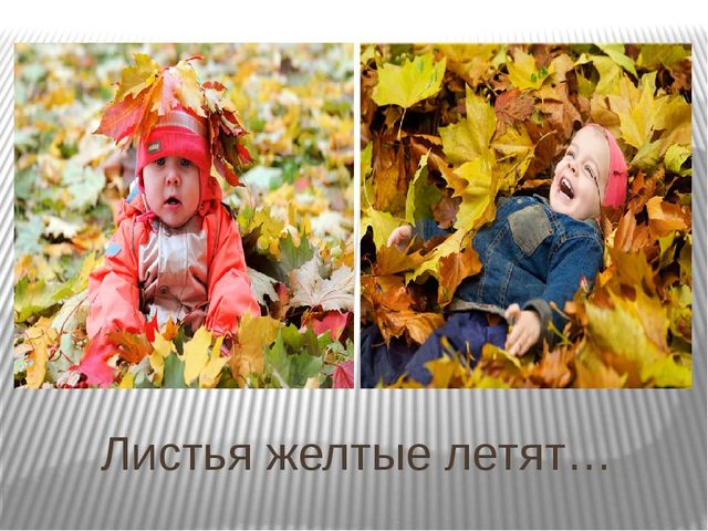 Листья желтые летят…