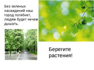 Без зеленых насаждений наш город погибнет, людям будет нечем дышать. Берегите