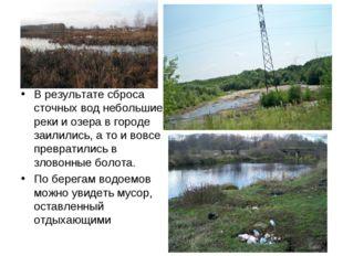 В результате сброса сточных вод небольшие реки и озера в городе заилились, а