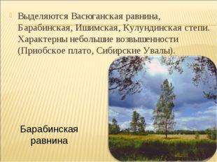 Выделяются Васюганская равнина, Барабинская, Ишимская, Кулундинская степи. Ха