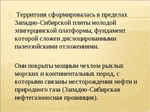 Территоия сформировалась в пределах Западно-Сибирской плиты молодой эпигерци