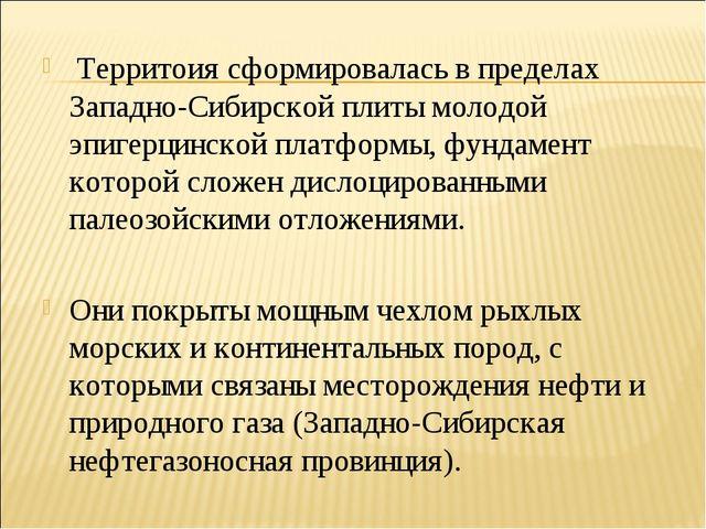 Территоия сформировалась в пределах Западно-Сибирской плиты молодой эпигерци...