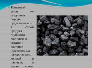 Каменный уголь — осадочная порода, представляющая собой продукт глубокого ра