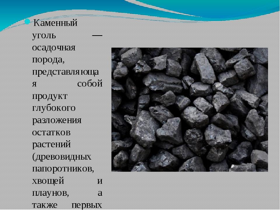 Каменный уголь — осадочная порода, представляющая собой продукт глубокого ра...
