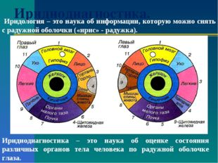 Иридиодиагностика. Иридиодиагностика – это наука об оценке состояния различны