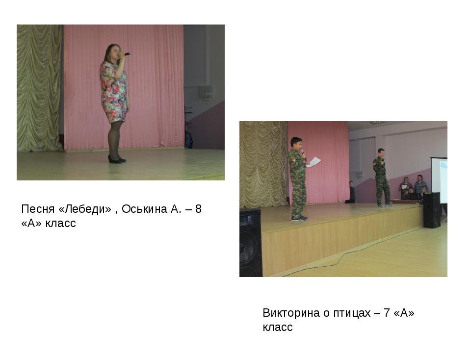 Песня «Лебеди» , Оськина А. – 8 «А» класс Викторина о птицах – 7 «А» класс