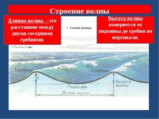 Строение волны Длинна волны - это расстояние между двумя соседними гребнями.