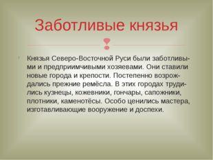 Князья Северо-Восточной Руси были заботливы-ми и предприимчивыми хозяевами. О