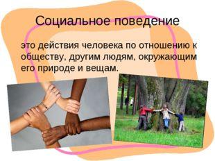 Социальное поведение это действия человека по отношению к обществу, другим лю