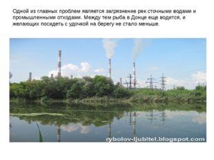 Одной из главных проблем является загрязнение рек сточными водами и промышлен