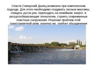 Спасти Северский Донец возможно при комплексном подходе. Для этого необходимо