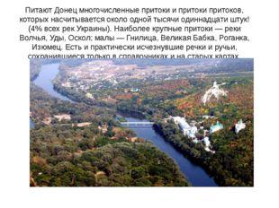 Питают Донец многочисленные притоки и притоки притоков, которых насчитывается