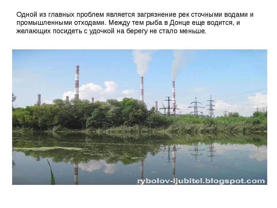 Одной из главных проблем является загрязнение рек сточными водами и промышлен...