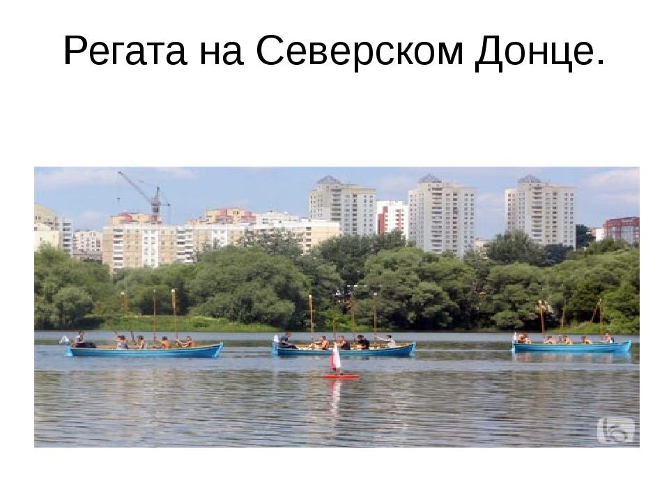 Регата на Северском Донце.
