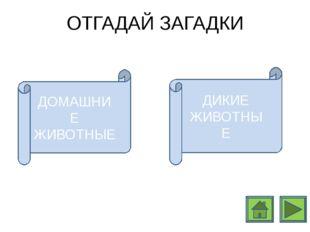http://www.darvinvet.ru/files/gryzuny/belki_2.jpg http://dreempics.com http:/