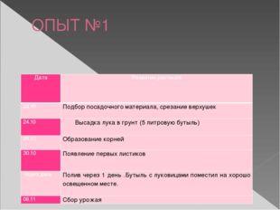 ОПЫТ №1 Дата Развитие растения 24.10 Подбор посадочного материала, срезание в