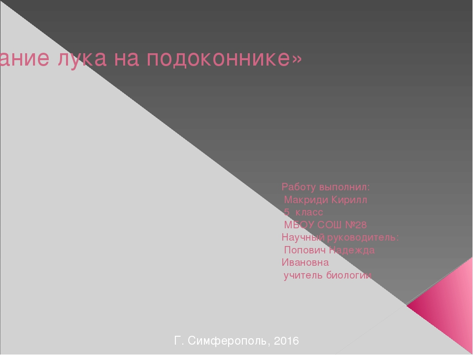 «Выращивание лука на подоконнике» Работу выполнил: Макриди Кирилл 5 класс МБО...
