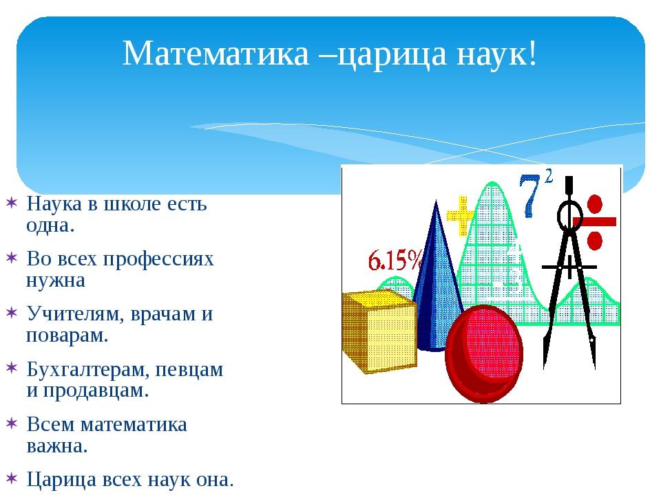 Математика –царица наук! Наука в школе есть одна. Во всех профессиях нужна Уч...