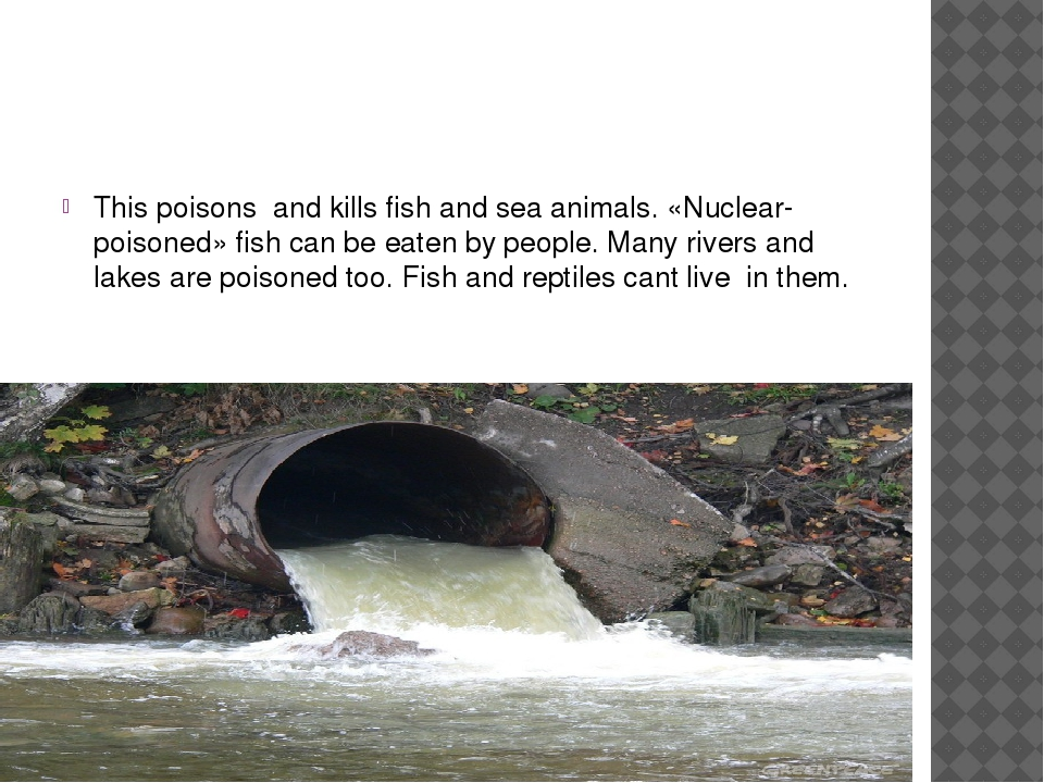This poisons and kills fish and sea animals. «Nuclear-poisoned» fish can be...