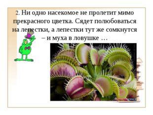 2. Ни одно насекомое не пролетит мимо прекрасного цветка. Сядет полюбоваться