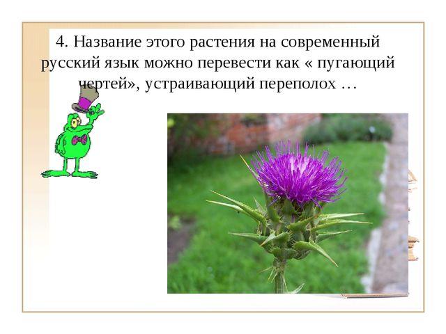 4. Название этого растения на современный русский язык можно перевести как «...