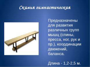 Скамья гимнастическая Предназначены для развития различных групп мышц (спины,