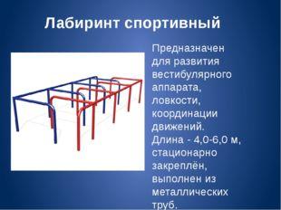 Лабиринт спортивный Предназначен для развития вестибулярного аппарата, ловкос