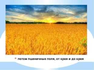 потом пшеничные поля, от края и до края