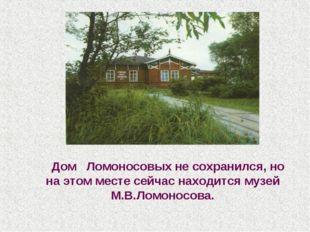 Дом Ломоносовых не сохранился, но на этом месте сейчас находится музей М.В.Л