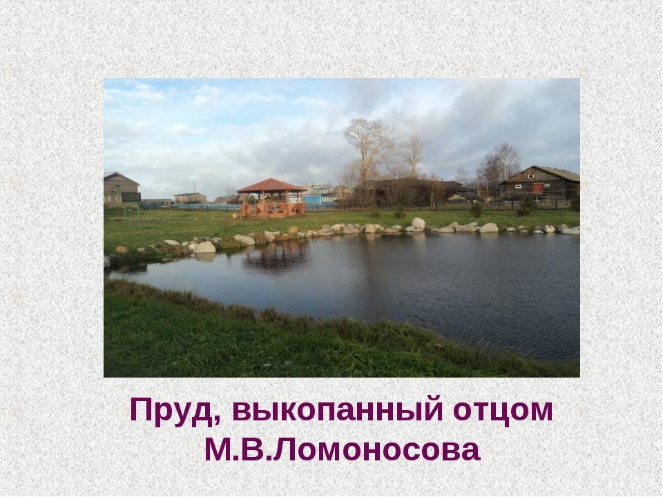 Пруд, выкопанный отцом М.В.Ломоносова