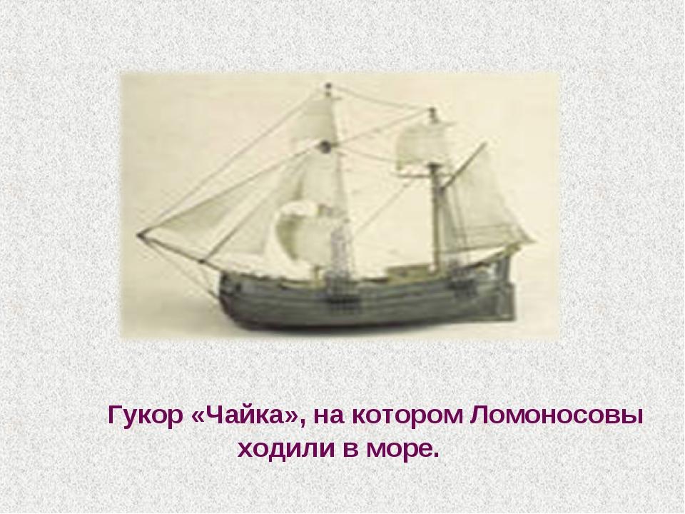 Гукор «Чайка», на котором Ломоносовы ходили в море.