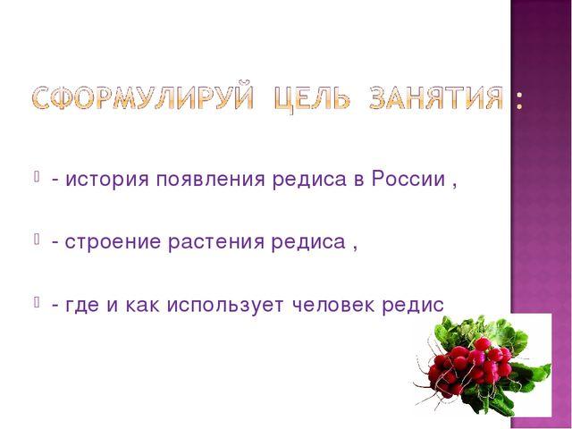 - история появления редиса в России , - строение растения редиса , - где и ка...