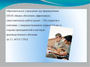 Образовательное учреждение при формировании ОПОП обязано обеспечить эффектив
