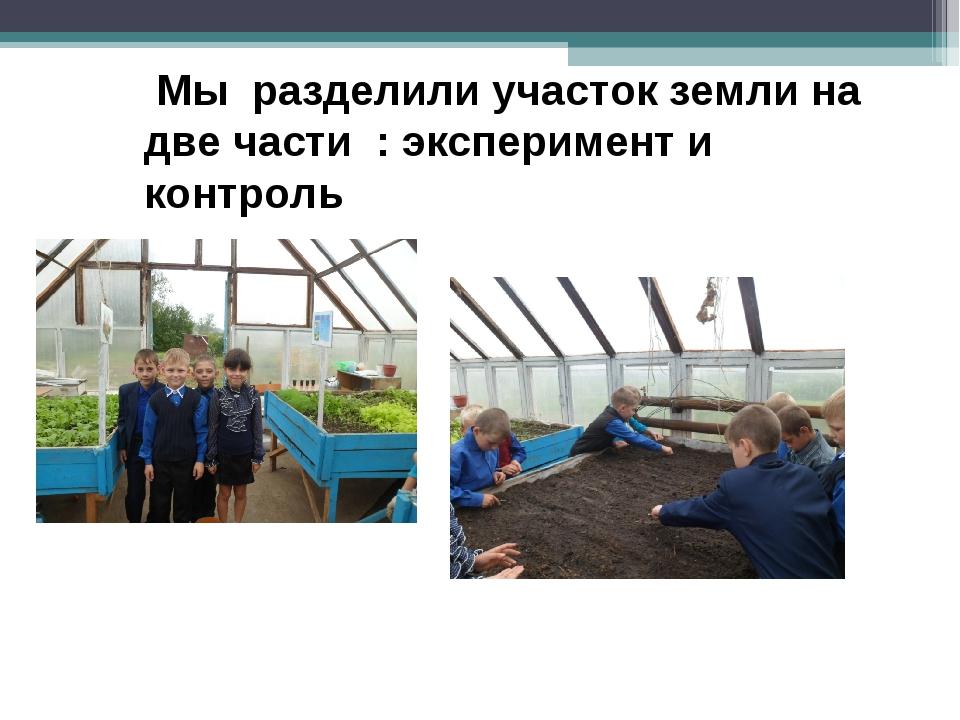 Мы разделили участок земли на две части : эксперимент и контроль