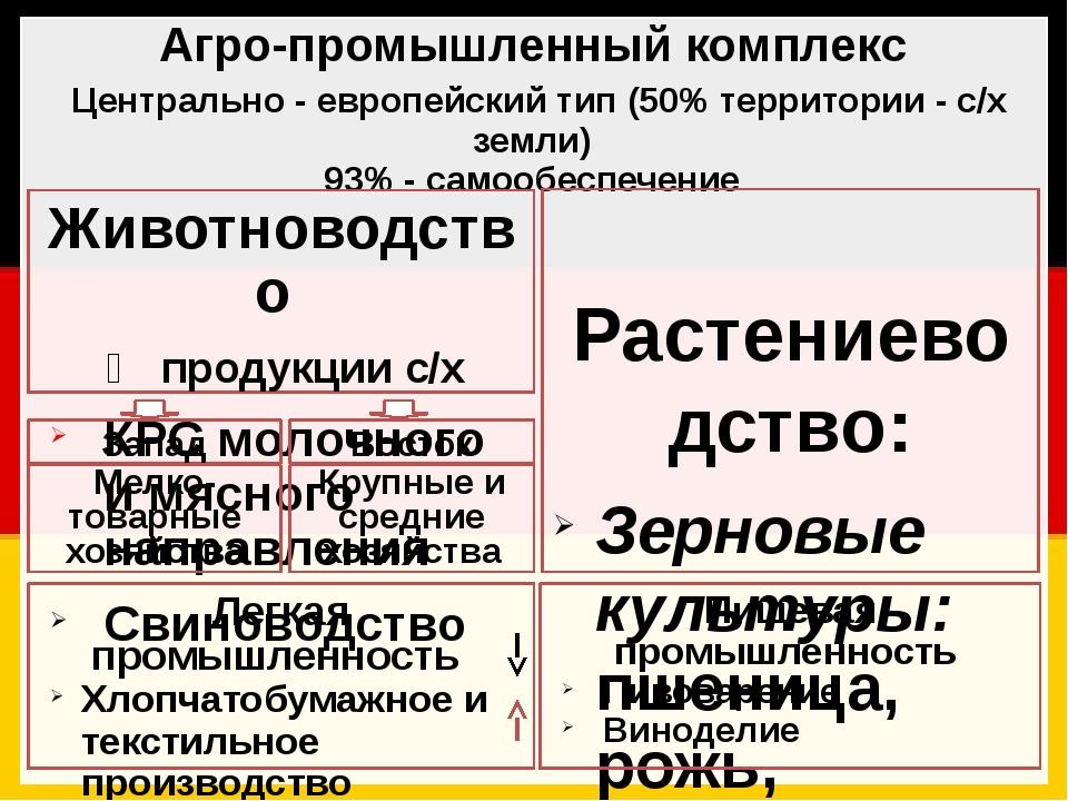 Агро-промышленный комплекс Центрально - европейский тип (50% территории - с/х...