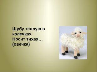 Шубу теплую в колечках Носит тихая… (овечка)