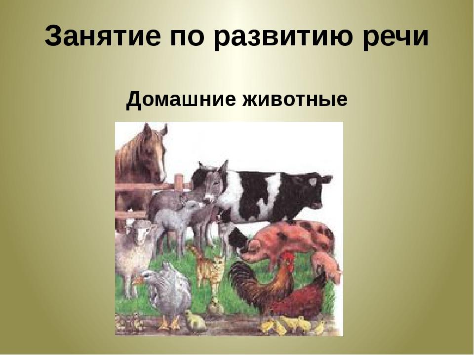 Занятие по развитию речи Домашние животные