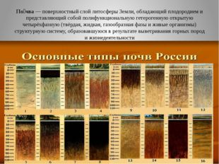 По́чва— поверхностный слойлитосферыЗемли, обладающийплодородиеми предста