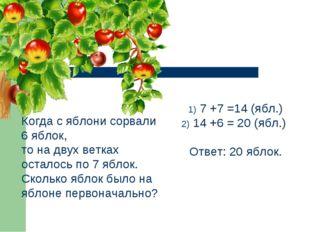 Когда с яблони сорвали 6 яблок, то на двух ветках осталось по 7 яблок. Скольк