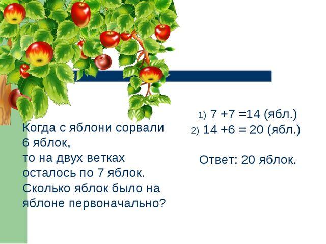 Когда с яблони сорвали 6 яблок, то на двух ветках осталось по 7 яблок. Скольк...