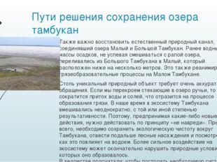 Пути решения сохранения озера тамбукан Также важно восстановить естественный