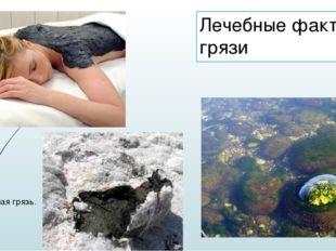 Лечебные факторы грязи Выдавленная грязь.