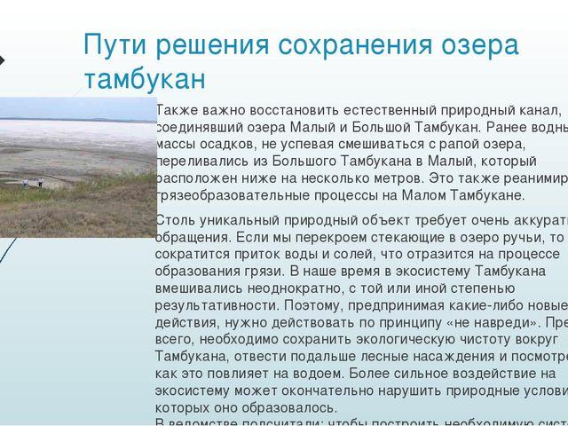 Пути решения сохранения озера тамбукан Также важно восстановить естественный...