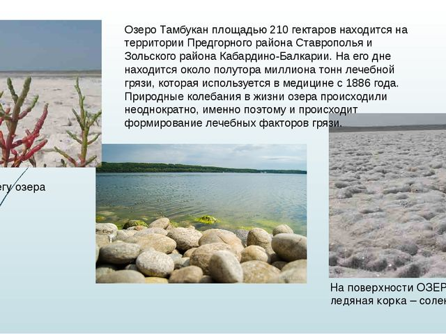 На берегу озера На поверхности ОЗЕРА не ледяная корка – соленая Озеро Тамбука...