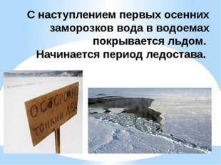 С наступлением первых осенних заморозков вода в водоемах покрывается льдом. Н